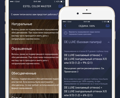 The first version of Estel Color Master app